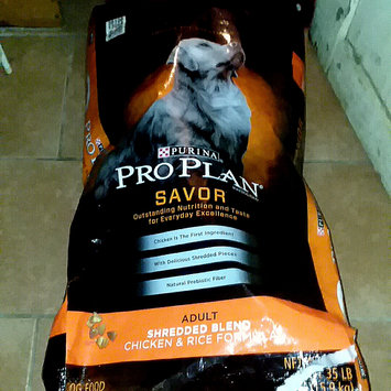 Photo of PRO PLAN® SAVOR® ADULT Shredded Blend Chicken & Rice Formula uploaded by Lakeshia R.