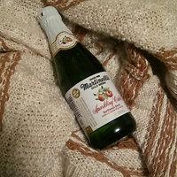Martinelli's Gold Medal Sparkling Apple Cider uploaded by Vivian S.