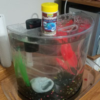 Tetra Blood Worms Freeze Dried Treat uploaded by Wendi S.