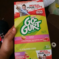 GO-GURT® Punch Strawberry Watermelon Yogurt Variety Pack uploaded by Mercedes B.