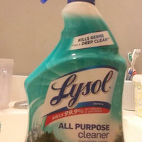 Lysol All Purpose Cleaner Fresh Mountain Scent uploaded by Sarah J.