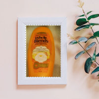 Garnier Whole Blends™ Illuminating Conditioner with Moroccan Argan and Camellia Oils Extracts uploaded by Rose F.