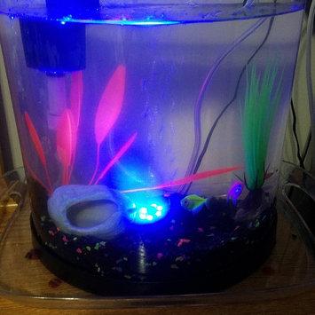 Photo of GloFish GLOAFish Starter Kit Aquarium uploaded by Wendi S.