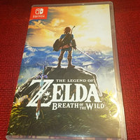 The Legend of Zelda: Breath of the Wild (Nintendo Switch) uploaded by Leah P.