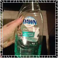 Dawn® Ultra Escapes™ New Zealand Springs Scent™ Dishwashing Liquid 532 mL Bottle uploaded by Lora M.