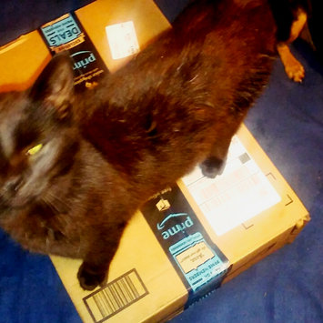 Photo of Amazon Prime uploaded by Coral B.