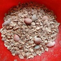 Quaker® Instant Oatmeal Dinosaur Eggs uploaded by Felicia J.