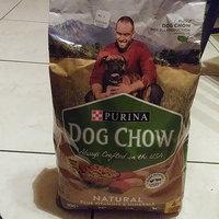 Purina Dog Chow Natural Plus Vitamins & Minerals Dog Food 4 lb. Bag uploaded by Virag M.