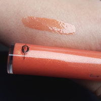 MAKE UP FOR EVER Artist Plexi-Gloss uploaded by Real C.