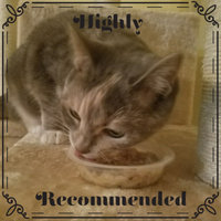 Rachael Ray™ Nutrish® Purrfect Entrees™ Sea-Sational Florentine™ Recipe uploaded by Stephanie M.