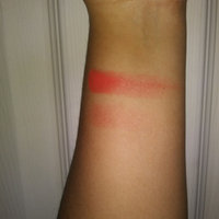 NYX Powder Blush uploaded by Dyanna R.