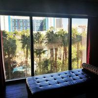 The Flamingo Las Vegas  uploaded by Rachel W.