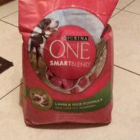 PURINA ONE® Smartblend Adult Dog Food uploaded by Virag M.