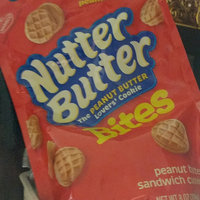 Nabisco Nutter Butter Sandwich Cookies - Peanut Butter Bites Snak-Saks uploaded by um s.