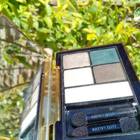 Estée Lauder Pure Color Envy Sculpting EyeShadow 5-Color Palette uploaded by Daniela V.