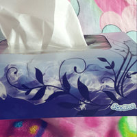 Scotties 2-Ply Facial Tissues uploaded by Meg M.