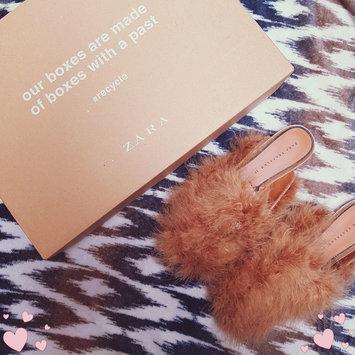 Photo of Zara uploaded by Emily R.