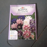 Burpee-Phlox, Fordhook Finest Mix Seed Packet uploaded by Daphne W.