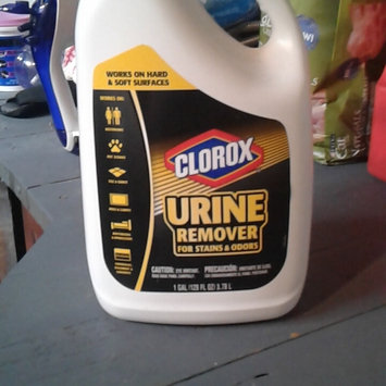 Photo of Clorox Urine Remover Stain & Odor 128-fl oz All-Purpose Cleaner uploaded by Daphne W.