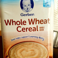 Gerber® Grain Cereal Whole Wheat uploaded by AB B.