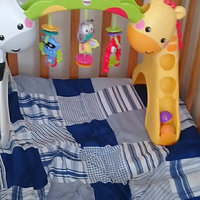 Fisher-Price Newborn-to-Toddler Play Gym. uploaded by Maria T.