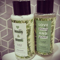 Love Beauty and Planet Tea Tree Oil and Vetiver Radical Refresher Shampoo uploaded by Tamara F.