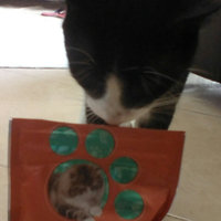 Iams™ Proactive Health™ Hairball Salmon Flavor Daily Treats Cat Food uploaded by Sabrina Gabriela G.