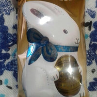 Ghirardelli Chocolate Milk Chocolate Caramel Bunny uploaded by Michelle L.