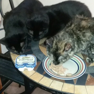 Photo of Nutro™ Wild Frontier™ Ancestral Inspired Pate Real Salmon & Trout Recipe Adult Cat Food 2-1.32 oz. Trays uploaded by Shalayna G.