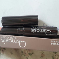 Osmosis Lipsticks uploaded by Mary Camil D.