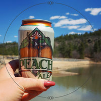 Four Peaks Brewing Company® Peach Ale 12 fl. oz. Can uploaded by Autumn S.