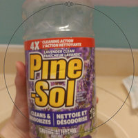 Pine-Sol Multi-Surface Cleaner Lavender Clean uploaded by Erin P.