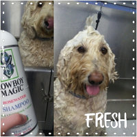Cowboy Magic® Rosewater Conditioner 32 fl. oz. Squeeze Bottle uploaded by Jocelyn W.