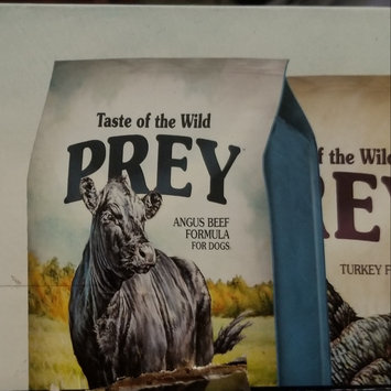 Photo of Taste of the Wild PREY Turkey Formula for Cats uploaded by Misty M.