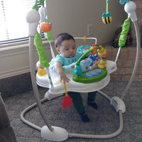 Fisher-Price Discover N' Grow Jumperoo, Blue, 1 ea uploaded by Laura R.
