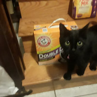 ARM & HAMMER™ Double Duty Clumping Cat Litter uploaded by Shannon C.