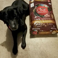 PURINA ONE® SmartBlend True Instinct with Real Turkey & Venison Adult Premium Dog Food uploaded by Naomie K.