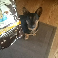Newman's Own Organics Premium Dog Treats Peanut Butter uploaded by Bryn N.