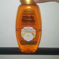 Garnier Whole Blends Moroccan Argan & Camellia Oils Extracts Illuminating Shampoo uploaded by Lee W.