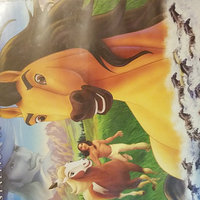 Spirit: Stallion of the Cimarron [Full Screen] (used) uploaded by Brittany A.