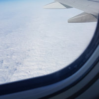 Delta Airlines uploaded by Sheyla B.