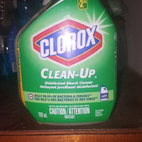 Clorox Clean-Up Cleaner + Bleach uploaded by Lee W.