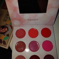 BH Cosmetics x Shaaanxo  Eyeshadow & Lipstick Palette uploaded by Debby F.