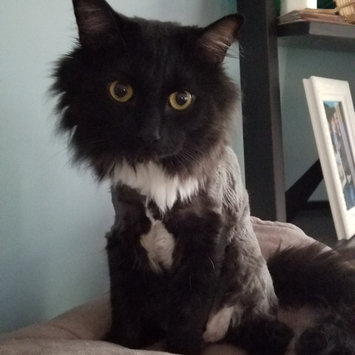 Photo of Wahl Pet Clipper Kit uploaded by Marissa B.