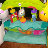 Fisher-Price Newborn-to-Toddler Play Gym. uploaded by Shauna C.
