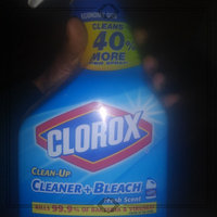 Clorox Clean-Up Cleaner + Bleach uploaded by Deazhane C.