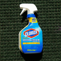 Clorox Clean-Up Cleaner + Bleach uploaded by Crystal W.