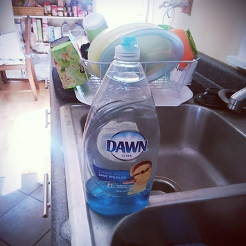 Photo of Dawn Ultra Concentrated Dish Liquid Original uploaded by Becca T.