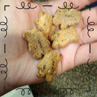 Nabisco Teddy Grahams Honey Maid Graham Snacks Chocolatey Chip uploaded by June L.
