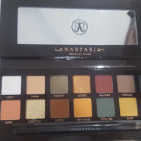 Anastasia Beverly Hills Subculture Eyeshadow Palette uploaded by Tiffany J.